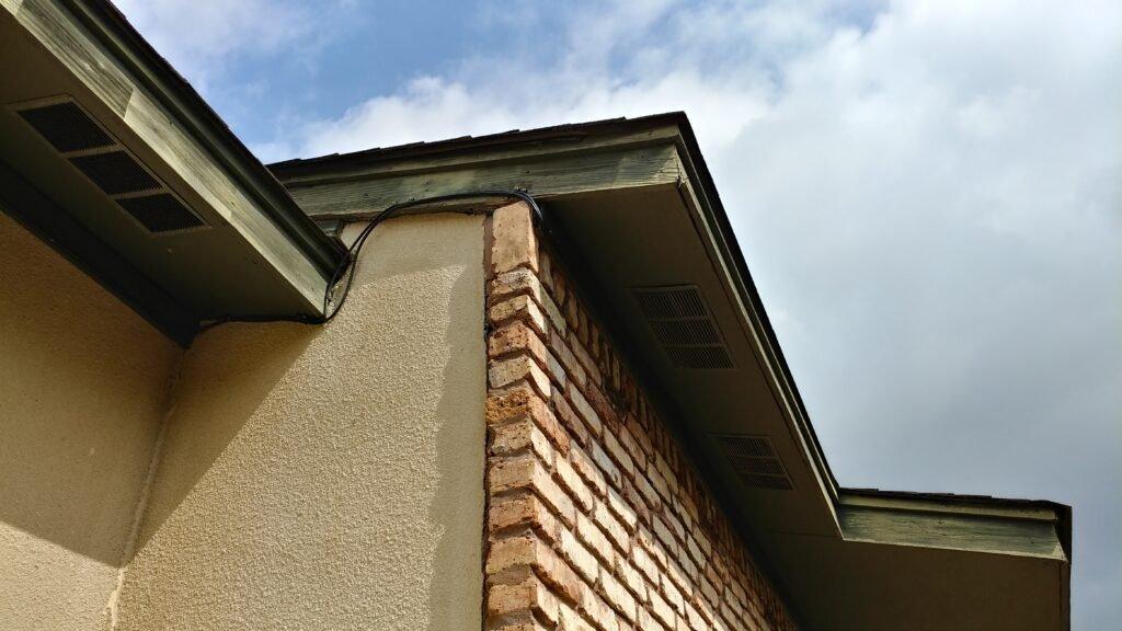 Photo of bat removal repairs