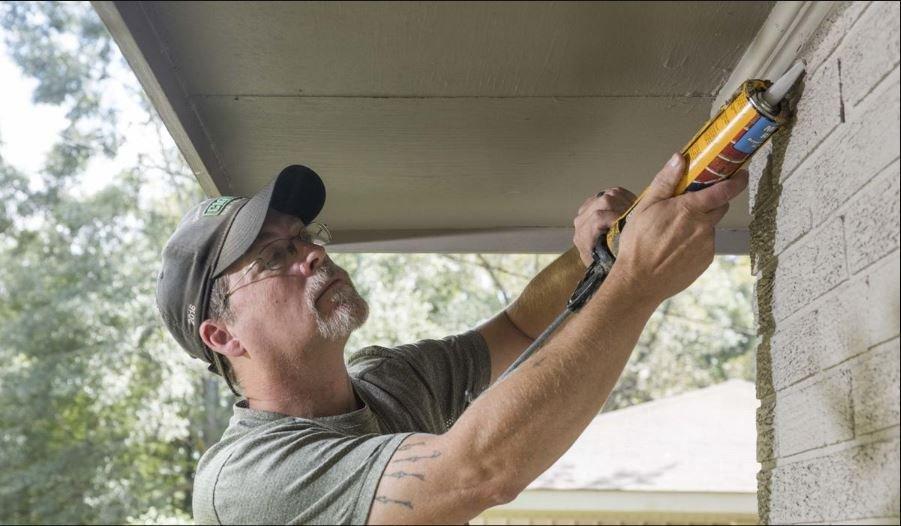 Bat removal repair photo